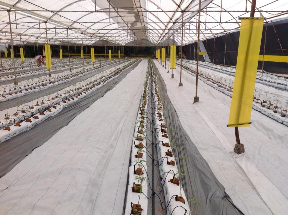 Programa de Inocuidad Agrícola AgroField